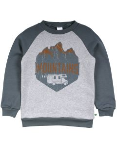 SWEAT-trøje med print